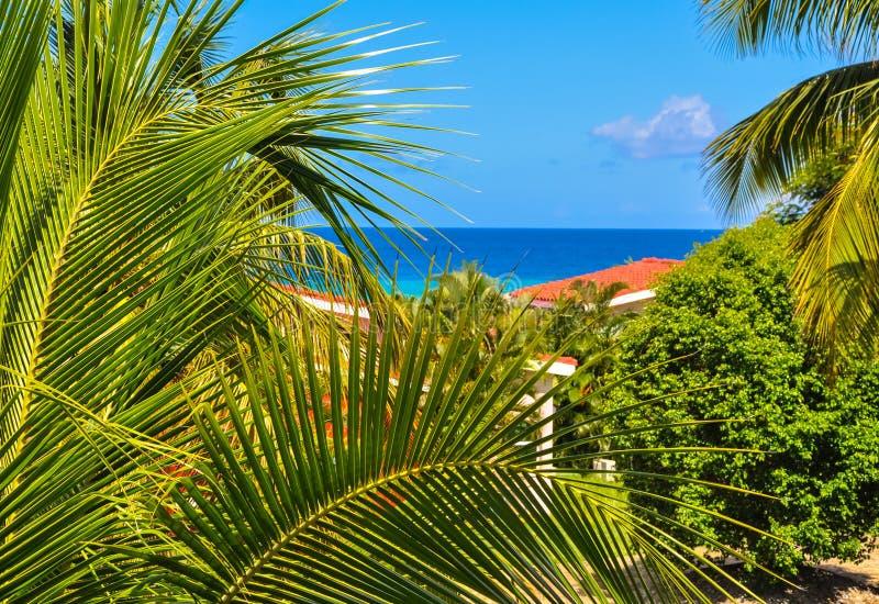 Tropikalny kurort obraz royalty free