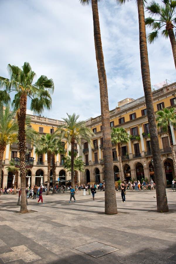Drzewka Palmowe w Placa Reial, Barcelona, Hiszpania zdjęcie stock