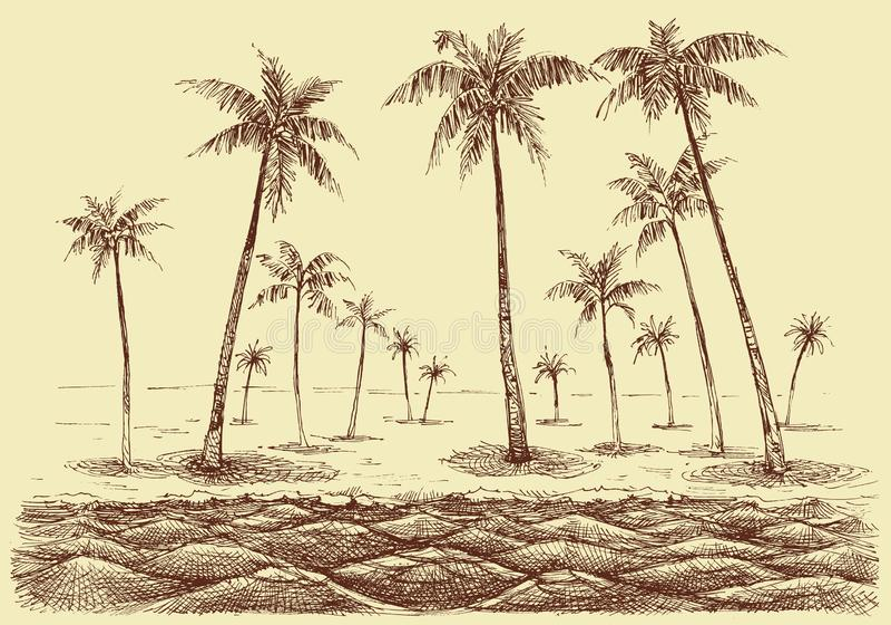 Drzewka palmowe wyrzucać na brzeg panoramę royalty ilustracja