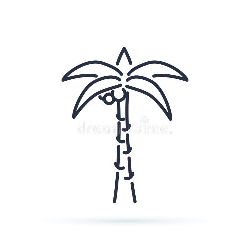 Drzewko palmowe konturu ikona liniowy stylu znak dla mobilnego pojęcia i sieć projekta Coco palmy prosta kreskowa wektorowa ikona ilustracji