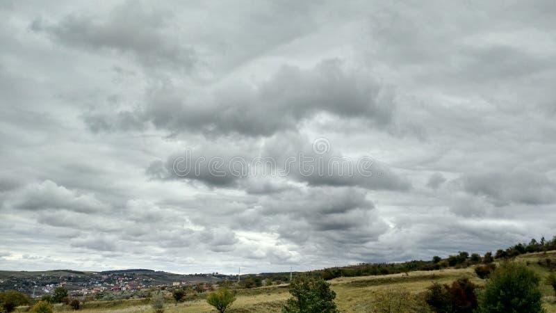 Drzewna autum bela chmurnieje zmierzch fotografia stock