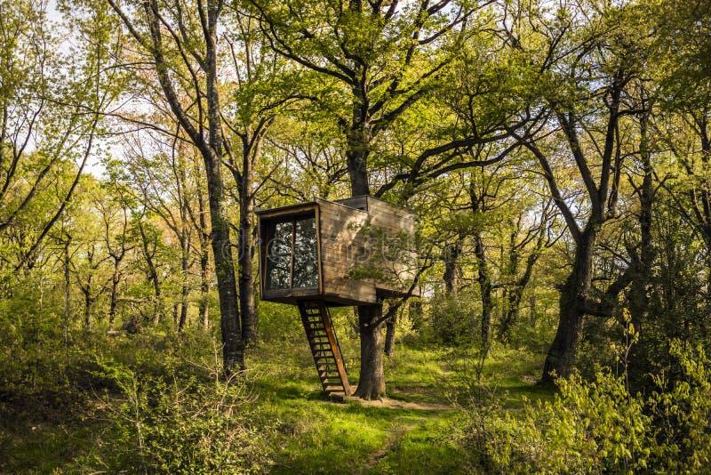 Drzewna buda w lesie obraz stock