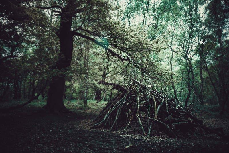 Drzewna buda zdjęcie royalty free