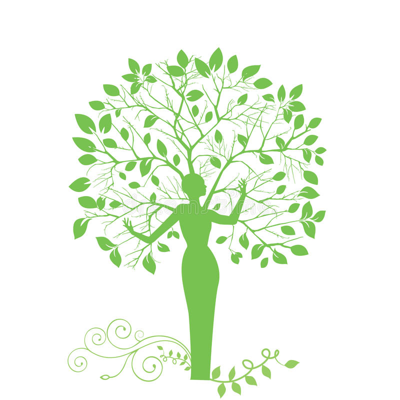 drzewna kobieta ilustracji