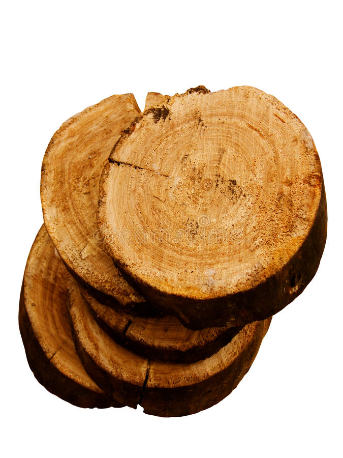 drzewne dębowe tekstury obrazy stock