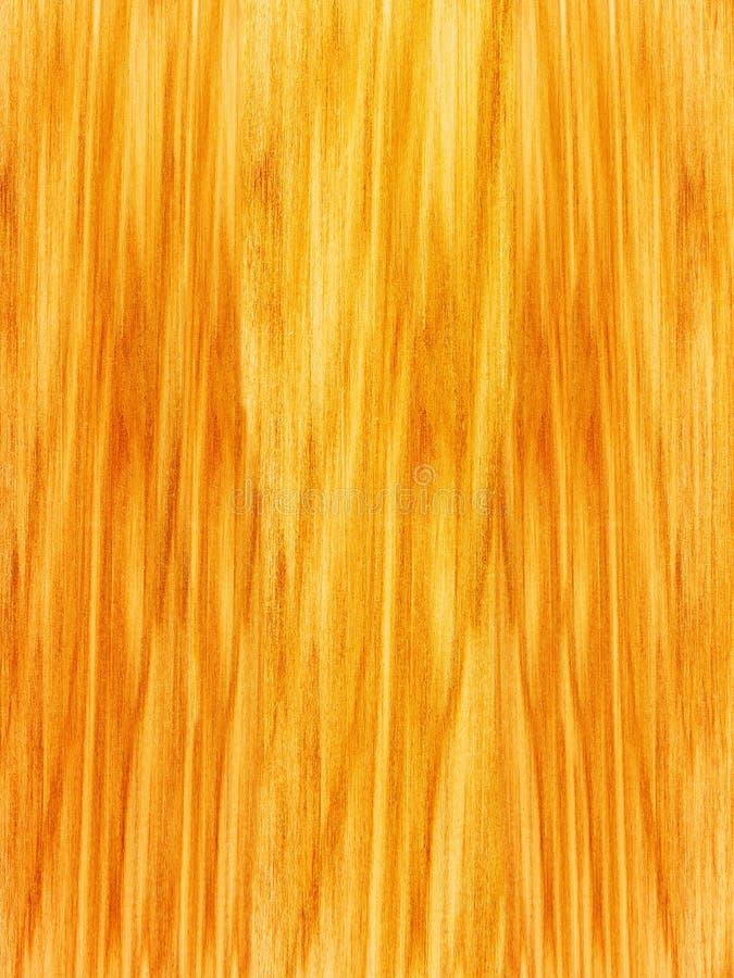 drzewne klonowe tekstury fotografia royalty free