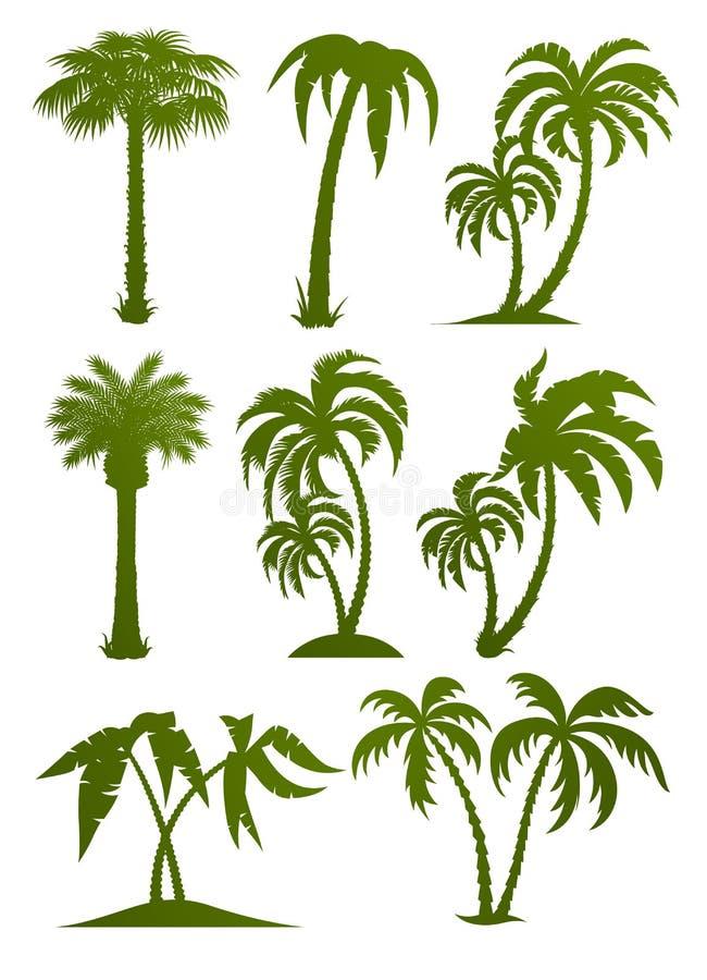 drzewne palmowe ustalone sylwetki ilustracji