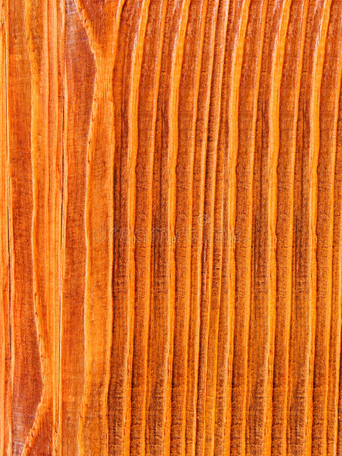 drzewne sosnowe tekstury obraz stock