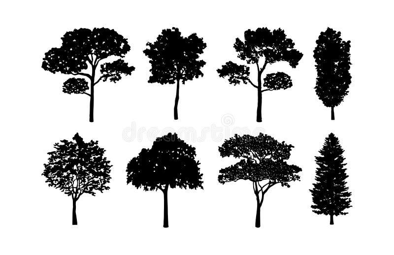 Drzewne sylwetek kolekcje Ustawiać royalty ilustracja