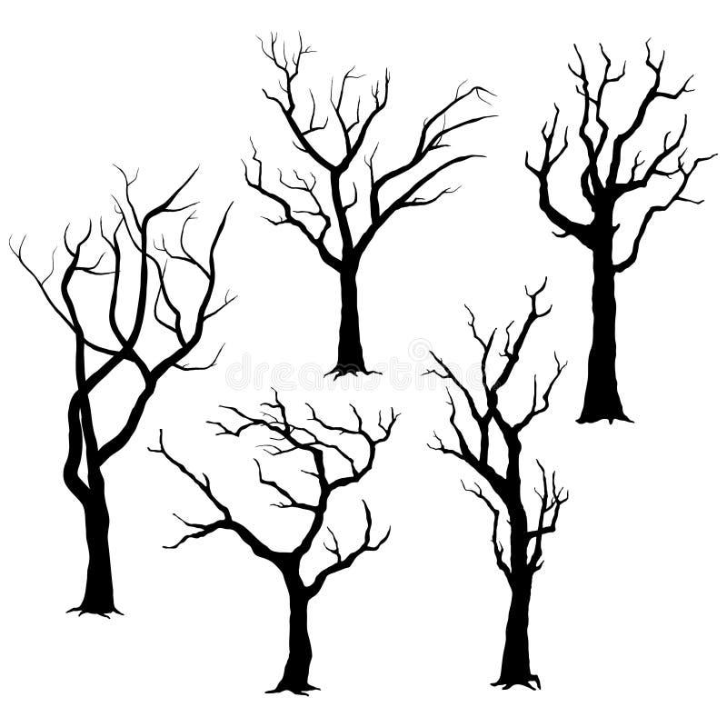 Drzewne sylwetki royalty ilustracja