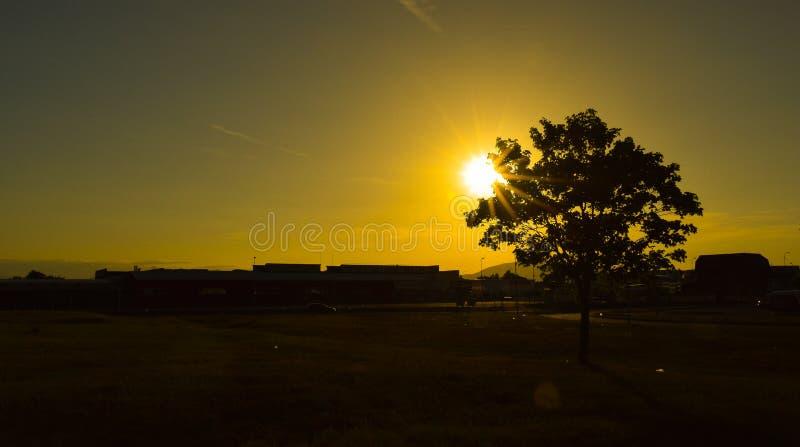 Drzewnego zmierzchu krajobrazu terenu przemysłowego słońca promieni sylwetki grodzki cień zdjęcie stock