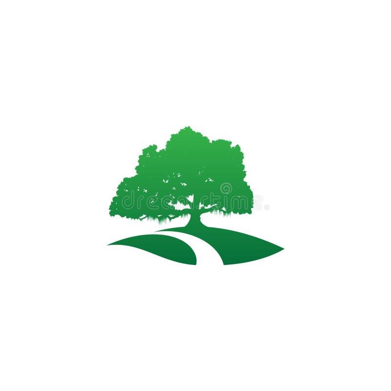 Drzewnej ikony nowożytny symbol dla grafiki i sieci projekta z drogą ilustracja wektor