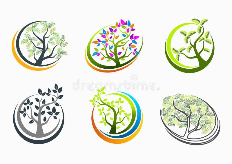 Drzewni zdrowie, logo, natura, zdrój, znak, masaż, ikona, roślina, symbol, joga i wzrostowy edukaci pojęcia projekt, ilustracja wektor