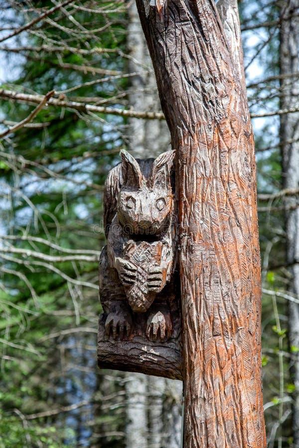 Drzewny cyzelowanie fotografia stock