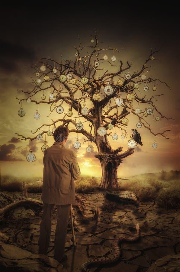 Drzewny czas royalty ilustracja