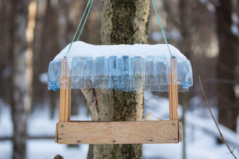 Drzewny dom dla żywieniowych ptaków w zimie z chlebowymi kawałkami obraz stock
