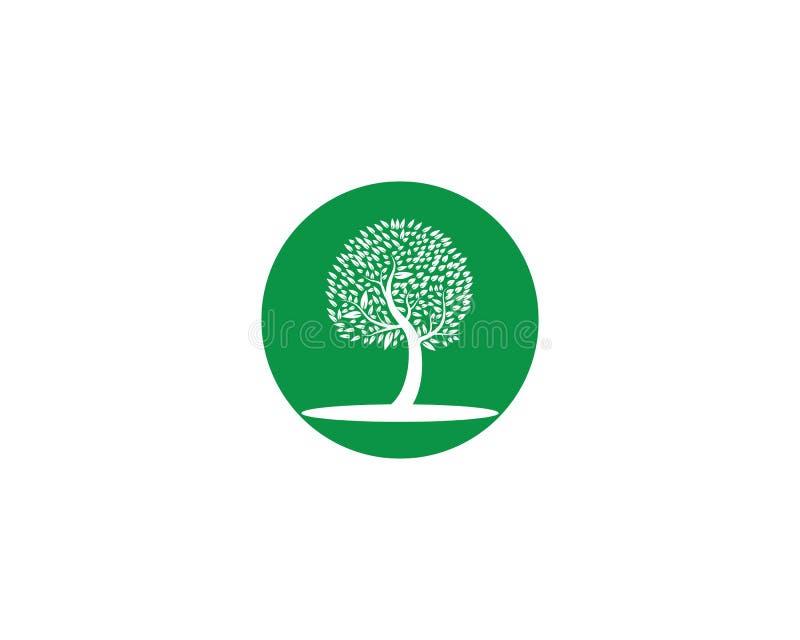 Drzewny ikona logo ilustracja wektor