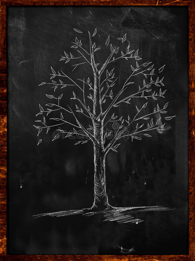 Drzewny nakreślenie z liśćmi na blackboard ilustracja wektor