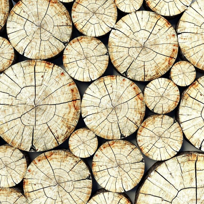 Drzewny przekrój poprzeczny fiszorek, bagażnika tło fotografia royalty free