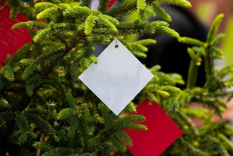 drzewny target3522_0_ zdjęcia stock