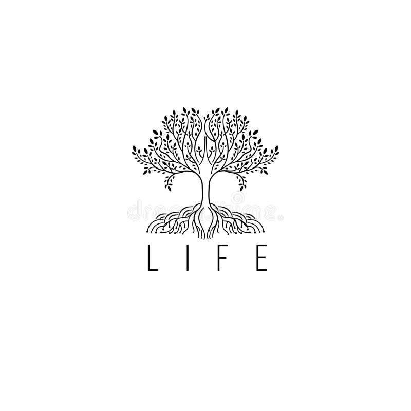 Drzewny wektorowy logo Drzewna ikona Drzewny luksusowy monogram dla butika royalty ilustracja