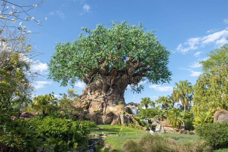 Drzewo życie, Disney World, Zwierzęcy królestwo fotografia stock