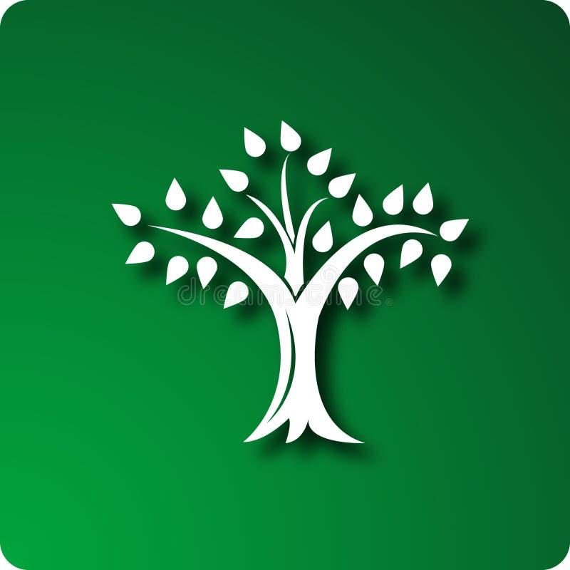 drzewo życia obrazy royalty free