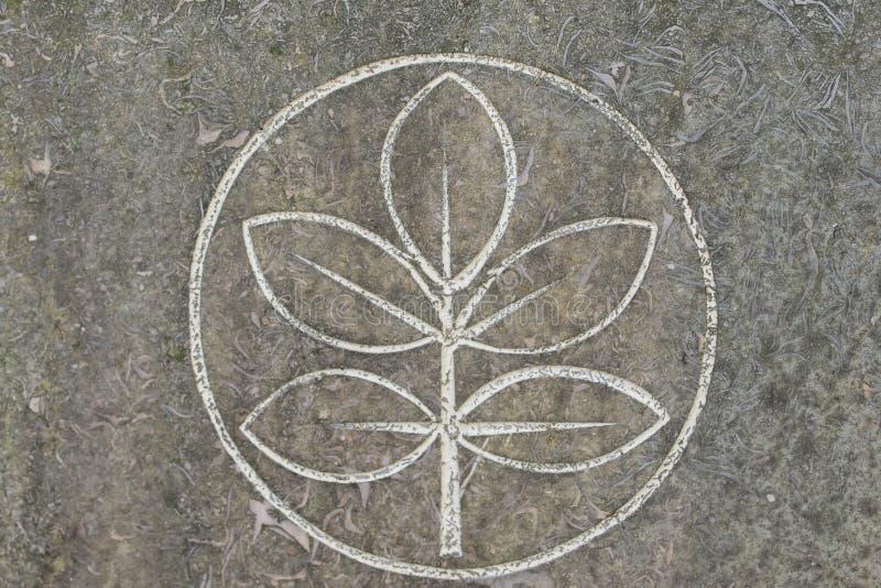 Drzewo życie i święty pierścionek na kamieniu ukazujemy się zdjęcie stock