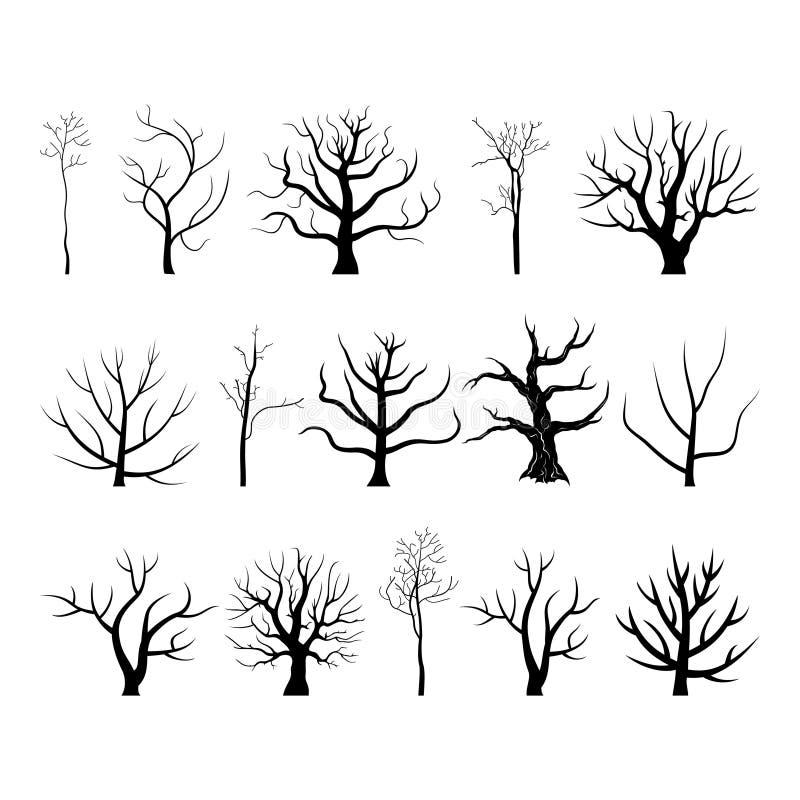 Drzewo branch4 obrazy stock