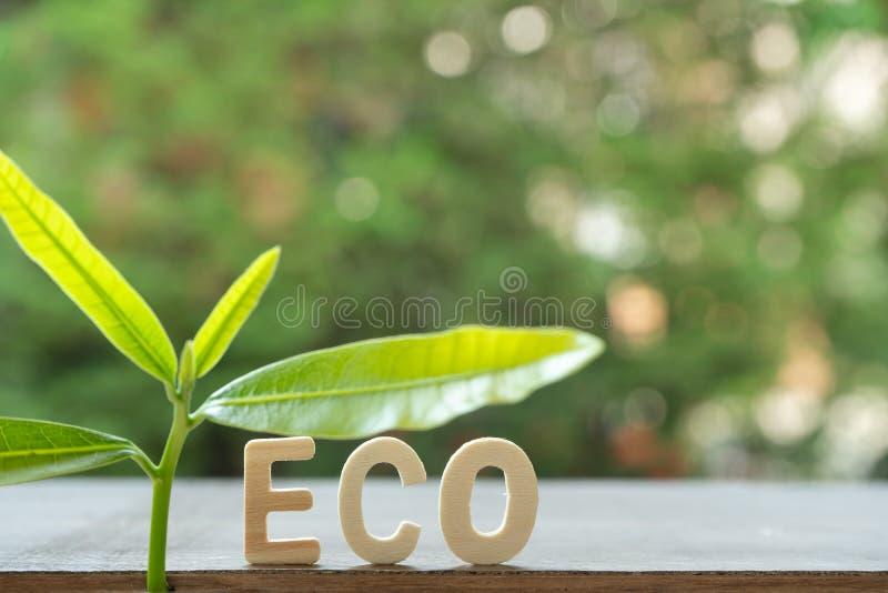 Drzewo, eco tex z zielonym tłem fotografia royalty free