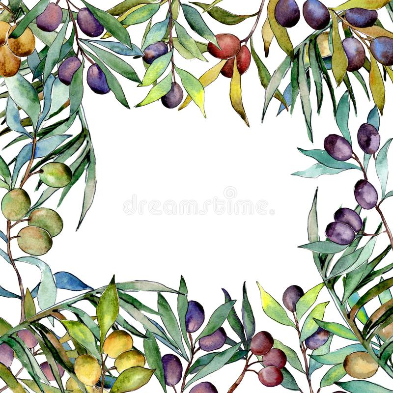 Download Drzewo Oliwne Rama W Akwarela Stylu Ilustracji - Ilustracja złożonej z sezonowy, liść: 106923731