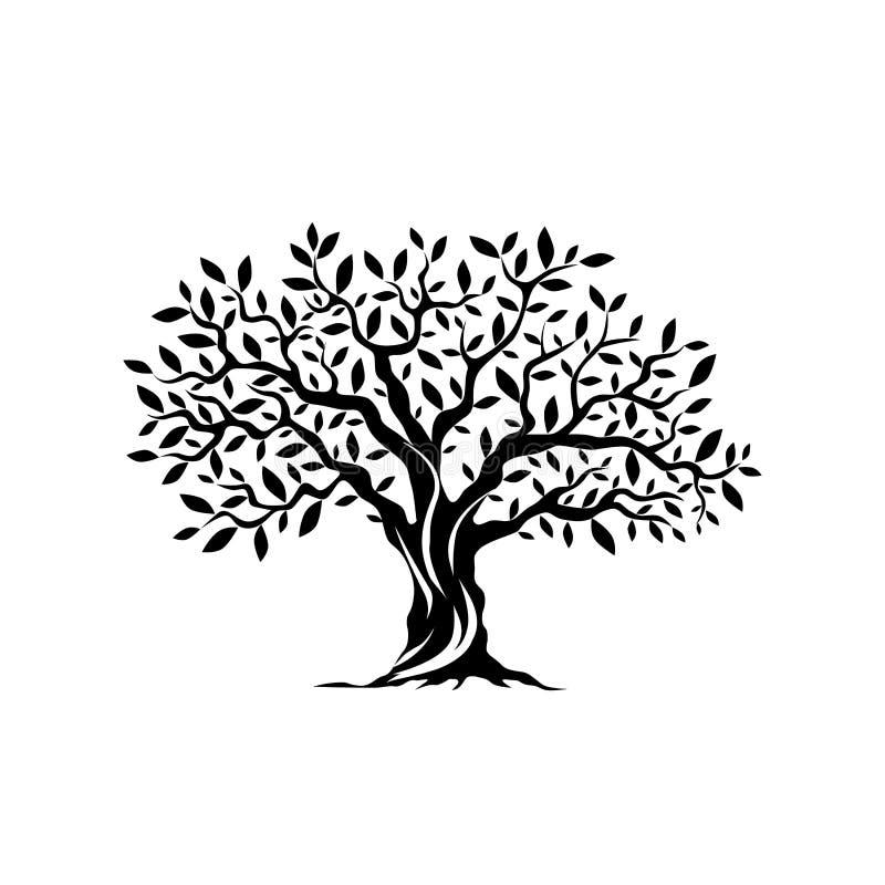 Drzewo oliwne sylwetki ikona odizolowywająca na białym tle ilustracja wektor