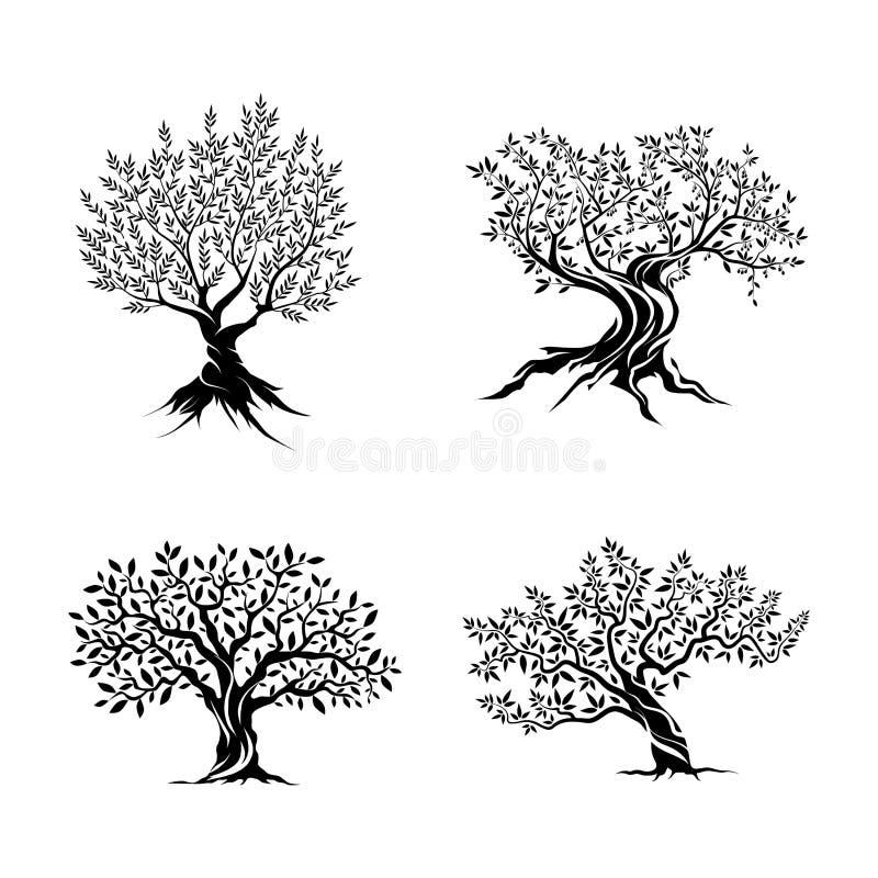 Drzewo oliwne sylwetki ikony set ilustracja wektor