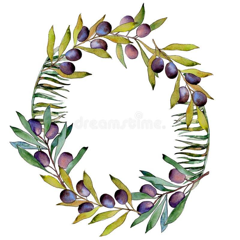 Download Drzewo Oliwne Wianek W Akwarela Stylu Ilustracji - Ilustracja złożonej z ilustracje, ulistnienie: 106923771