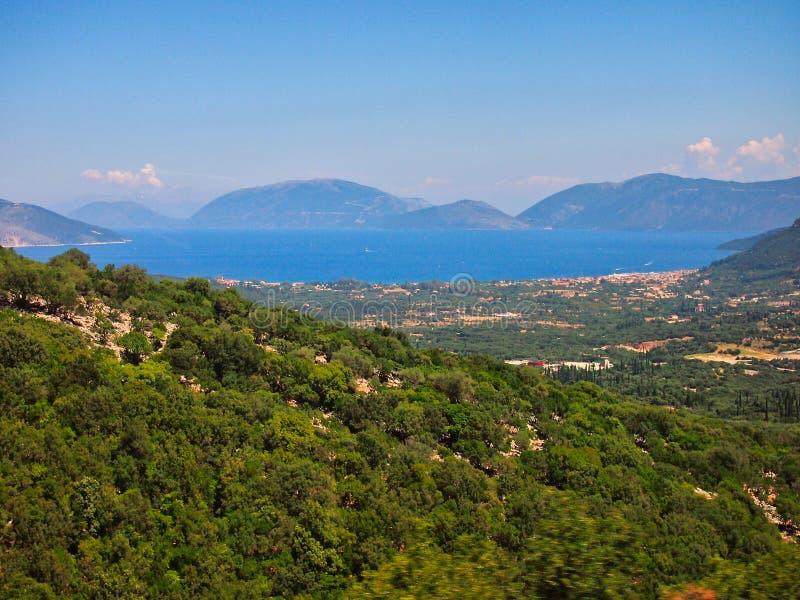 Drzewo Oliwne zieleni krajobraz, Kefalonia, Grecka wyspa obrazy stock