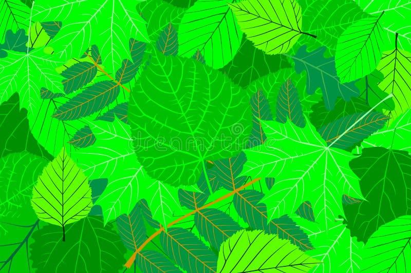 Drzewo opuszcza wektor ilustracja wektor
