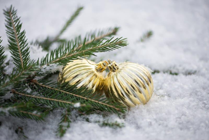 Drzewo ornamenty w śniegu obrazy royalty free