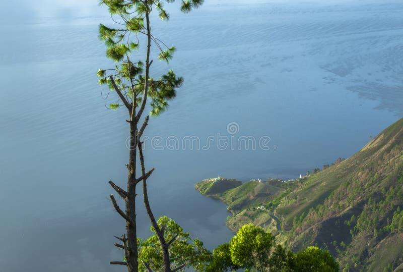 Drzewo po środku Jeziornego Toba widoku fotografia stock