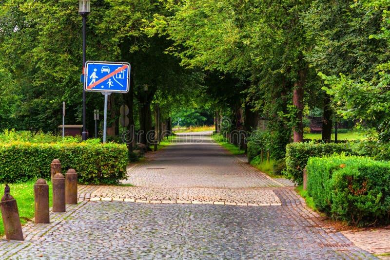 Drzewo prążkowana wiejska droga fotografia royalty free