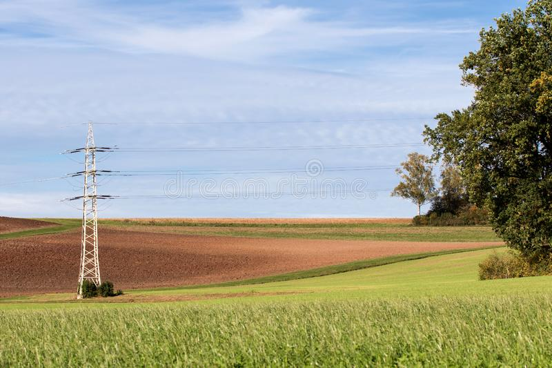 Drzewo przed linią elektroenergetyczną wysokiego napięcia fotografia stock