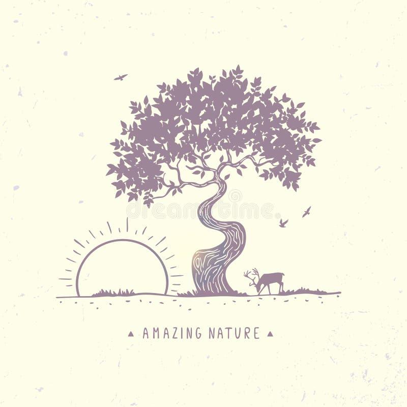 Drzewo przy świtem royalty ilustracja