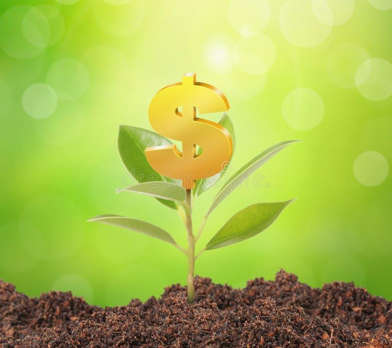 drzewo rosnące pieniądze ilustracja wektor