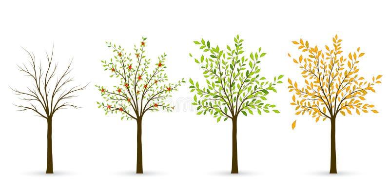 Drzewo w cztery sezonach - zima, wiosna, lato, jesień Wektor il royalty ilustracja