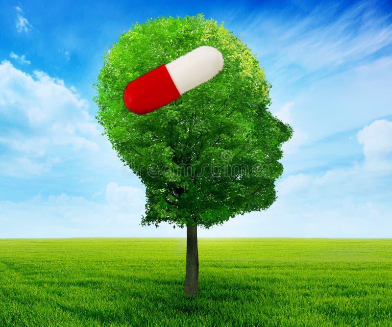 Drzewo w kształcie strona profilu ludzka głowa z pigułką zdjęcia stock