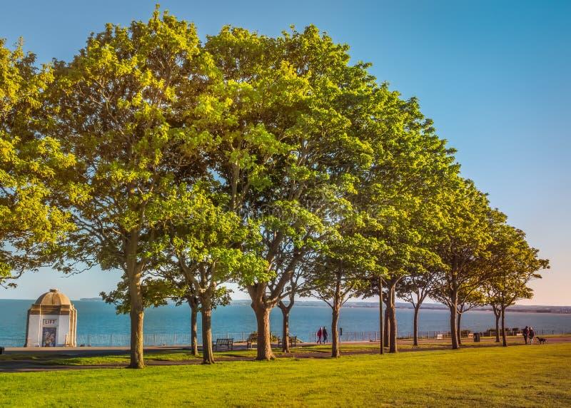 Drzewo wykładał spacer wzdłuż Królewskiej esplanady w Ramsgate fotografia royalty free