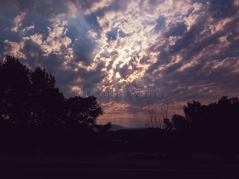 Drzewo z chmurami w wschód słońca obrazy stock