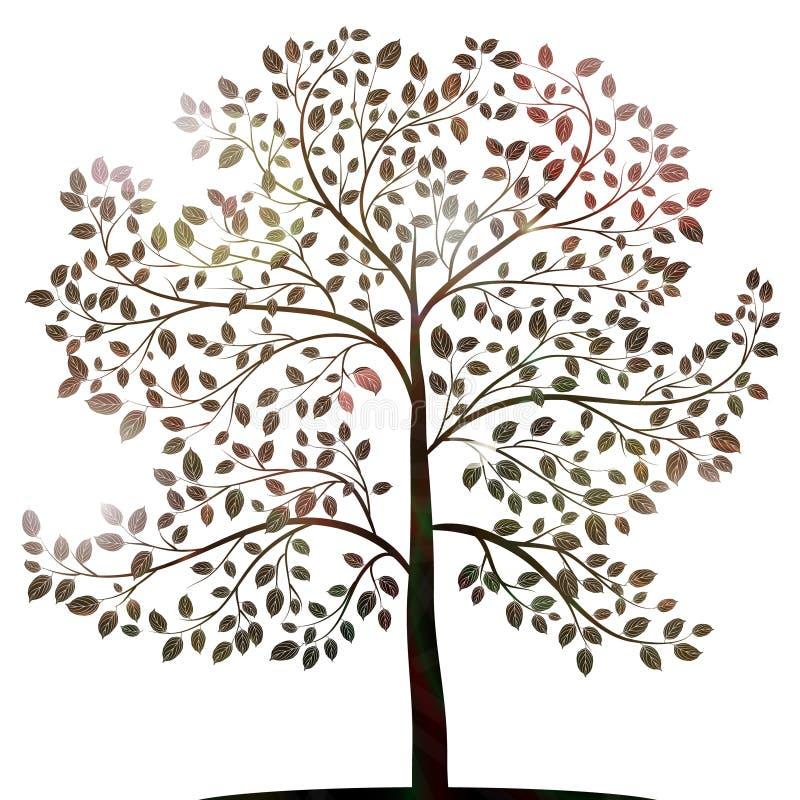 Drzewo z liść sylwetką na białym wektorze ilustracji