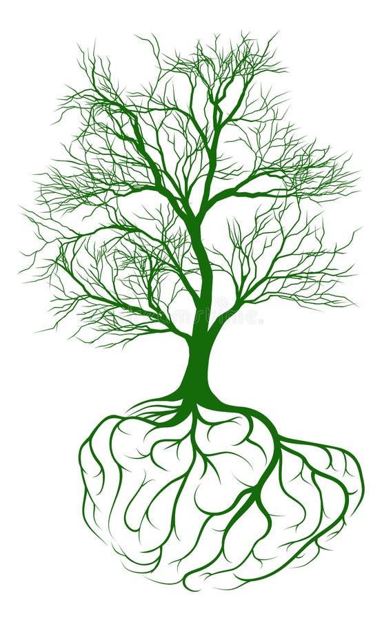 Drzewo z móżdżkowymi korzeniami ilustracja wektor