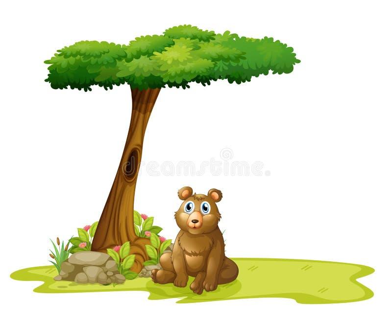 Drzewo z wydrążeniem przy plecy niedźwiedź ilustracja wektor