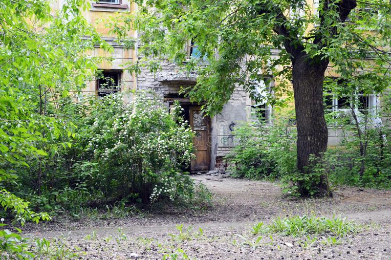 Drzwi zaniechany dom, stoi w zwartych gąszczach obrazy stock